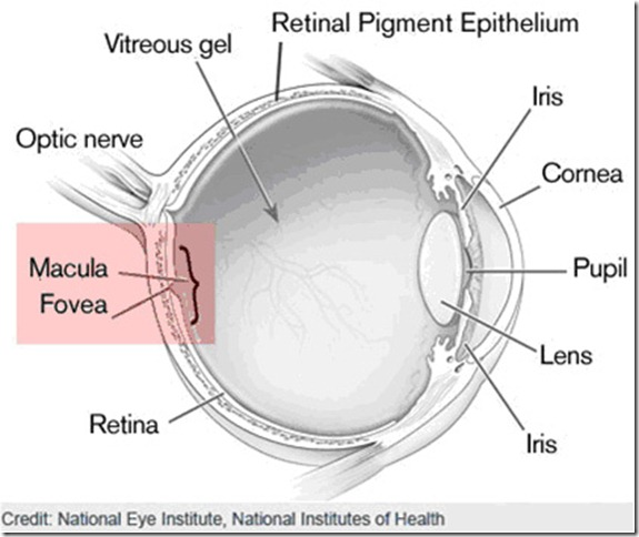 Eye diagrams the will to see eye2 ccuart Choice Image